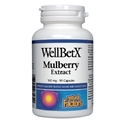 БЯЛА ЧЕРНИЦА, 100 mg 90 kaпс. Natural Factors WellBetX® Mulberry Extract